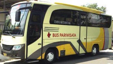 Sewa Bus Jakarta Non AC