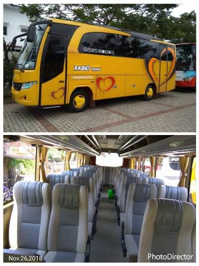 Harga Sewa Bus Mini