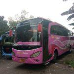 Sewa Bus Pariwisata Tangerang Selatan